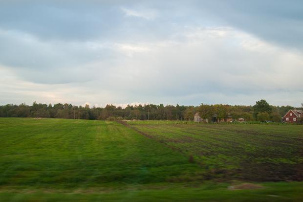 baltic_468.jpg