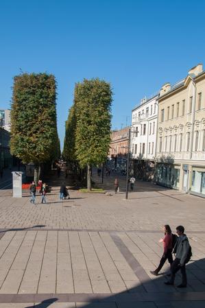 baltic_490.jpg