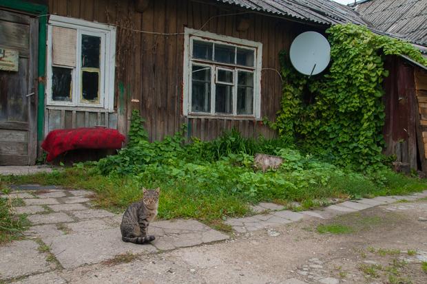 baltic_708.jpg
